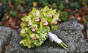 exemplo de buque de orquídea