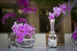Orquídeas para decoração de casamento são tendência