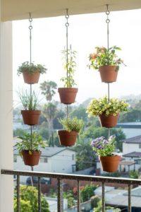 jardim vertical ocupa pouco espaço
