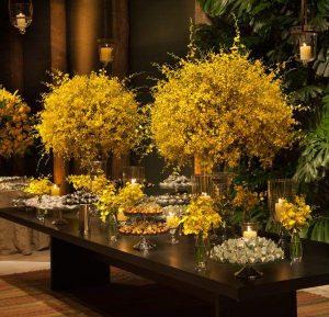 orquideas amarelas