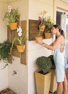 Como Cuidar Orquídeas Fora de Casa