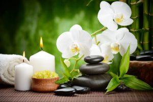 Orquídeas e seus Benefícios